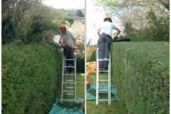 Gardening Maintenance 6