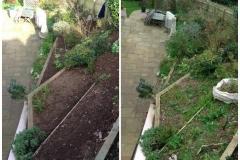 Gardening Maintenance 8