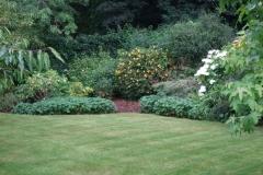 Gardening Maintenance 9